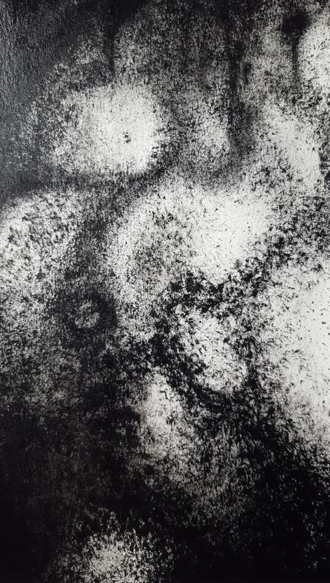 Angle-de-nue-détail-2 ©PeggyAnnMourot