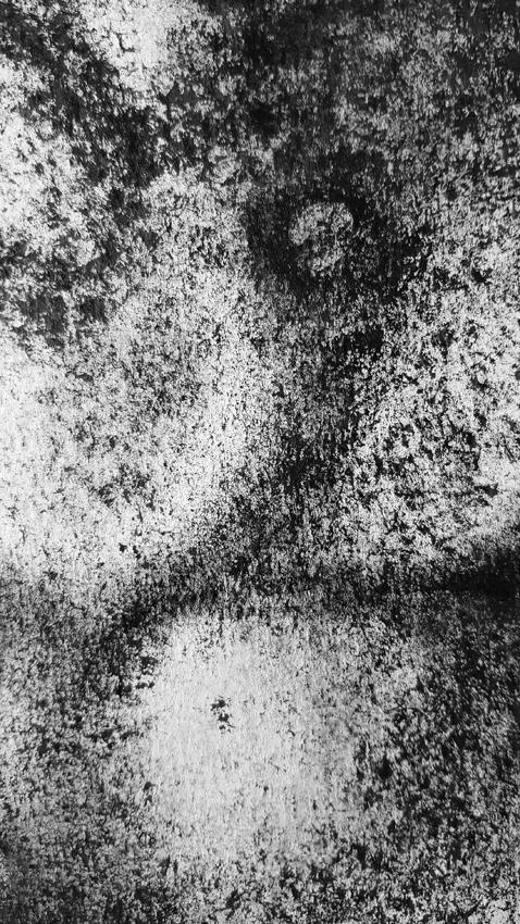 Angle-de-nue-détail ©PeggyAnnMourot