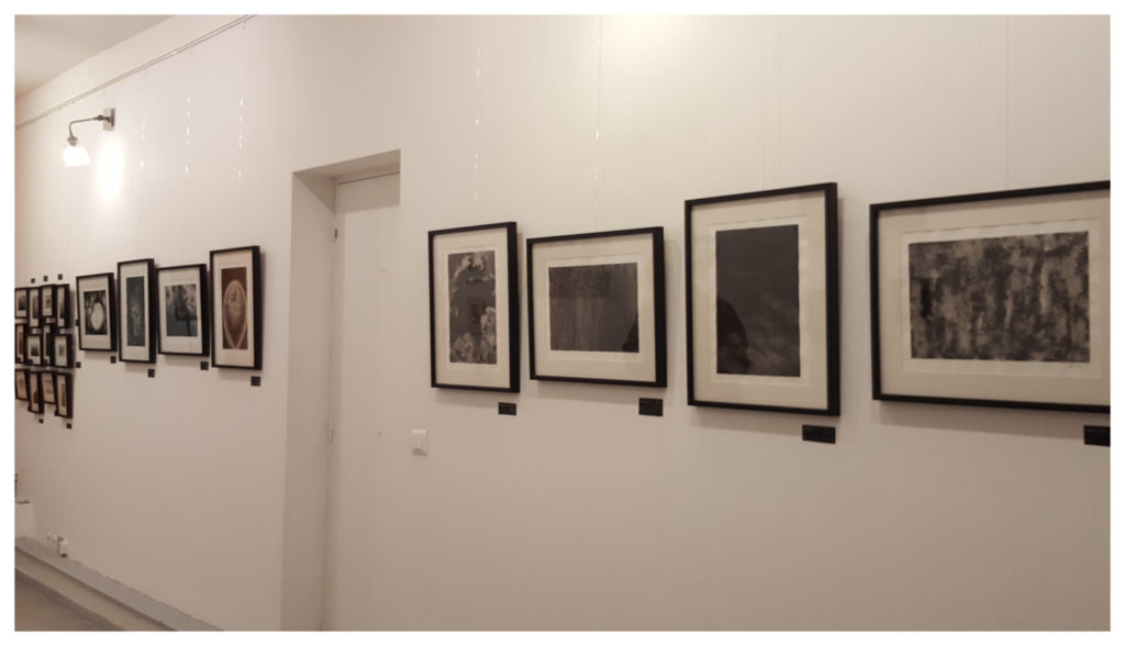 Exposition Le 10 ©PeggyAnnMourot