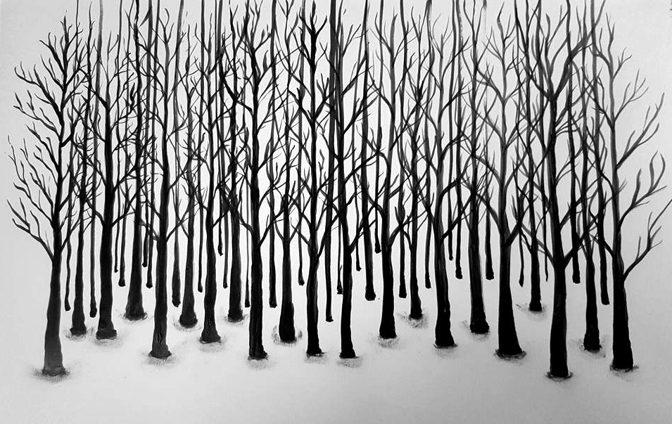 Forest ©PeggyAnnMourot