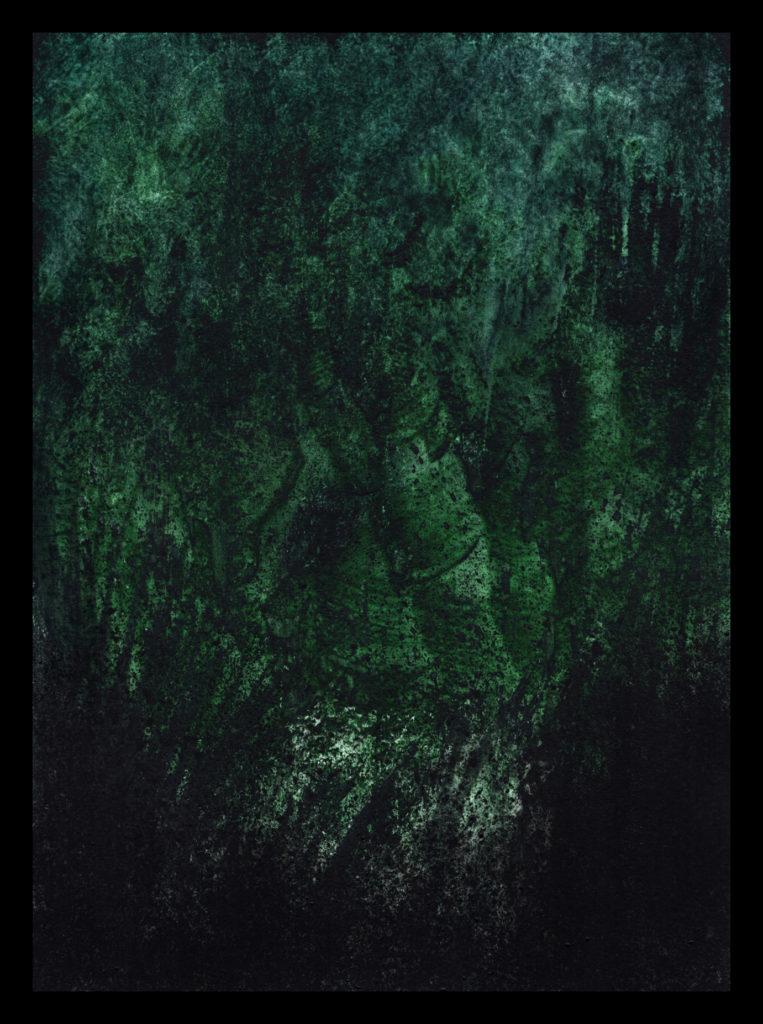 Green Hell ©PeggyAnnMourot